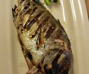 Grilled lavraki (sea bass)